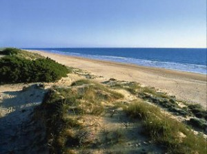 Lastminute Urlaub in Spanien an der Costa de la Luz