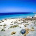 Last Minute Urlaub auf Fuerteventura - Kanaren -  Südteil der Insel