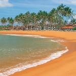 Lastminute Urlaub auf Sri Lanca -  Clubhotel Dolphin - Strand