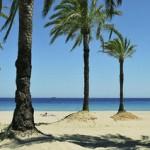Last Minute Reisen und Last Minute Restplätze für Ibiza - Strand am Club Bahamas