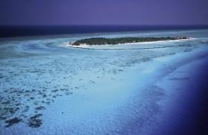Last Minute Reisen auf die Malediven - Last Minute Angebote - Summer Island Resort