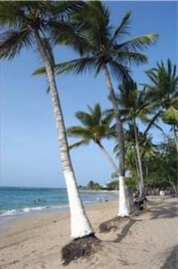 Last Minute Restplätze und Last Minute Angebote für den Last Minute Urlaub in der Dom Rep - Strand-Playa Dorada