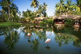 Last Minute Angebote für den Last Minute Urlaub in der Dom Rep im Natura Park Beach Resort und Spa in Punta Cana