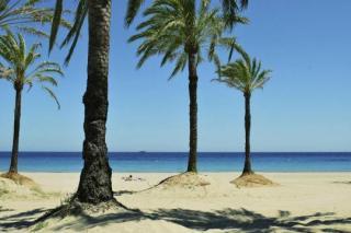 Last Minute Reisen und Last Minute Restplätze für Ibiza im Club Bahamas mit einem Blick vom Strand