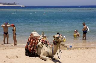 Ägypten - Jaz Makadi Star u. Spa mit einem Blid vom Meer
